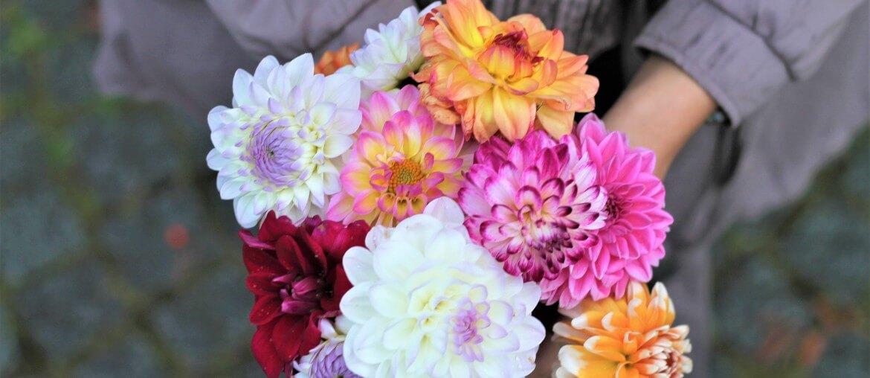 Valentinstag Blumen Blumenstrauß