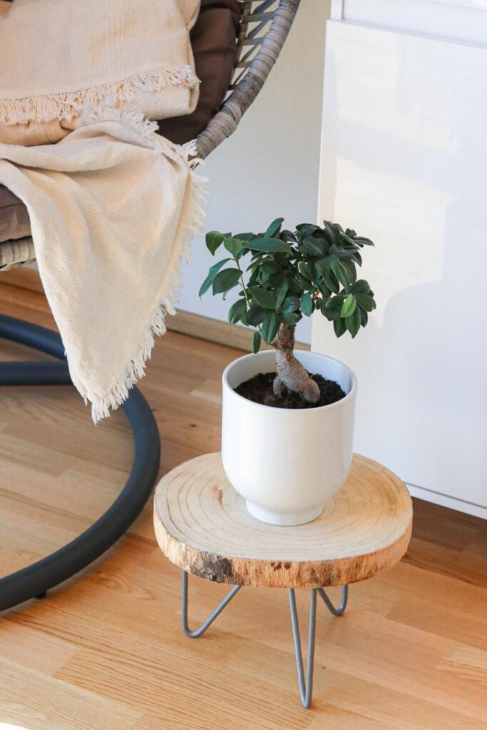 Baumscheiben Deko - Schöne Deko Ideen mit Holzscheiben